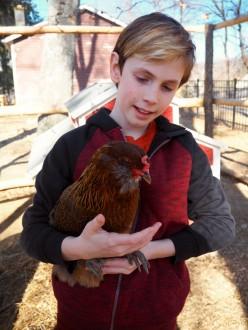 Jasper Chicken